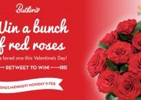 Butlins Valentines