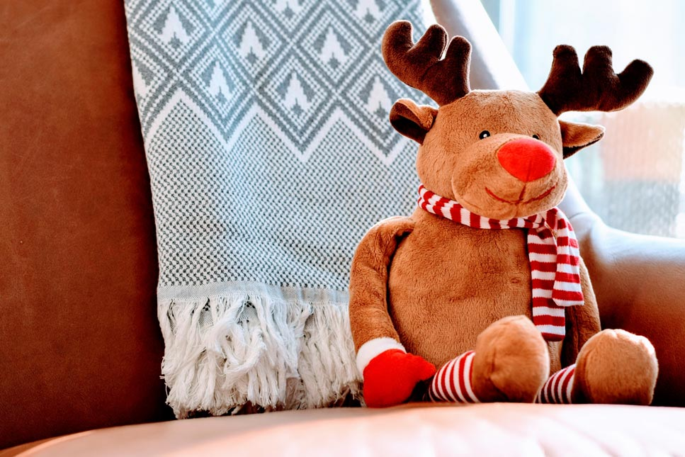 Christmas reindeer. Image taken from Unsplash.com | Butlins blog